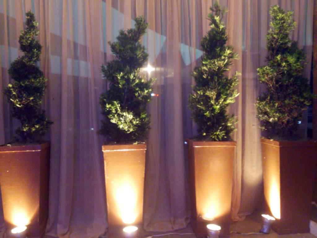 planta para evento