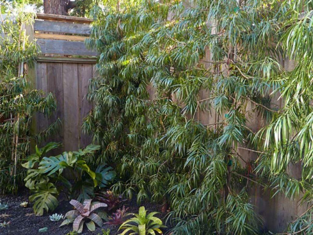 jardins rústicos externos