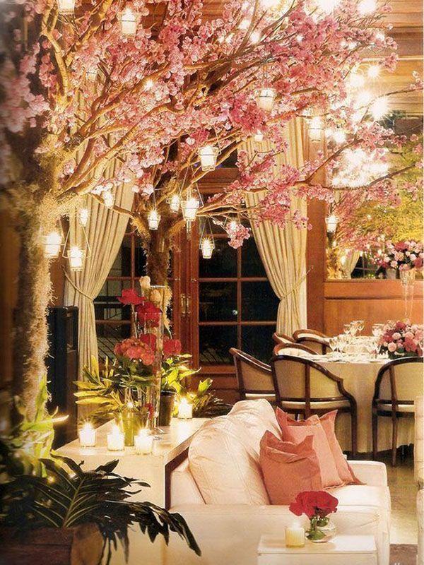 árvore de cerejeira iluminada