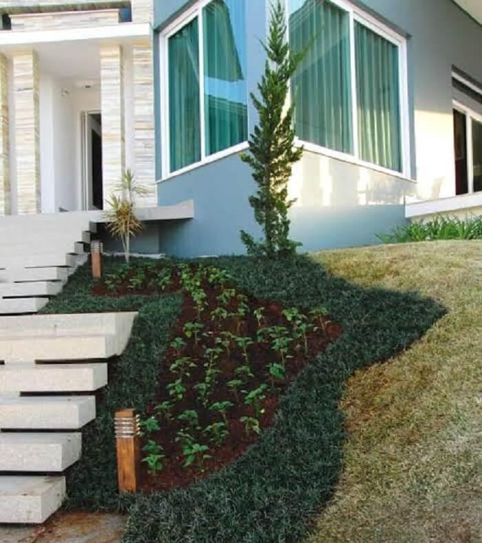 fachada decorada com grama