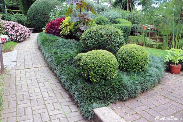 jardim com grama