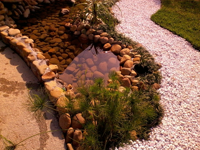 lago com pedras