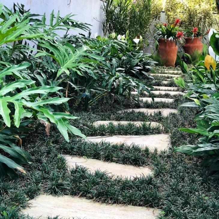 jardim simples com grama
