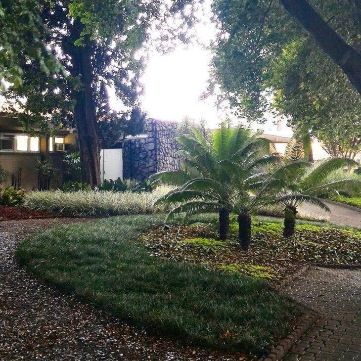 lindo jardim decorado