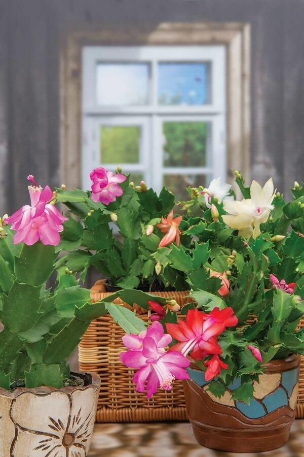 vasos decorativos de flores