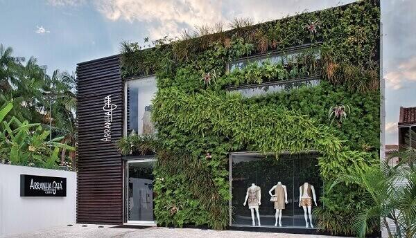 jardim vertical  na parede