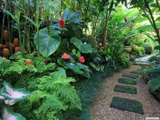 jardim tropical externo