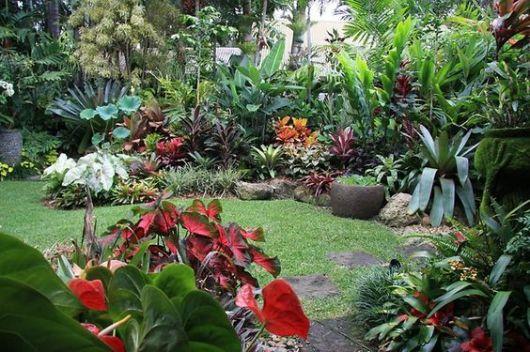 jardim tropical simples