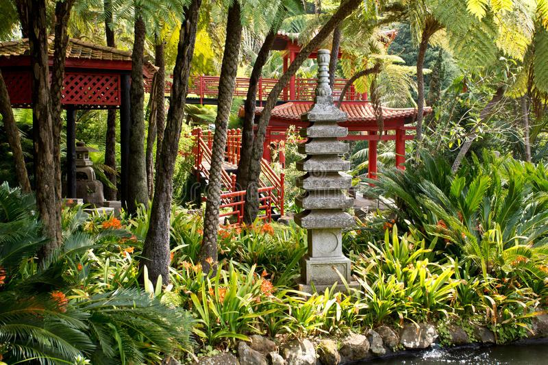 jardim tropical com lago
