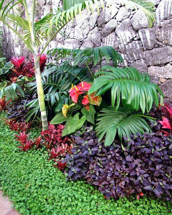 muro coberto de vegetação