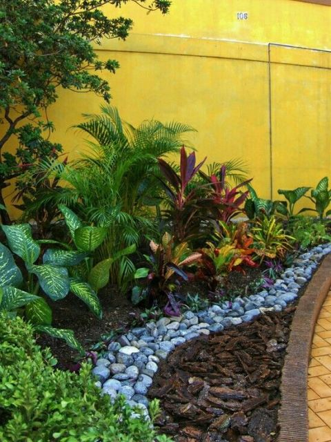 pequeno jardim tropical