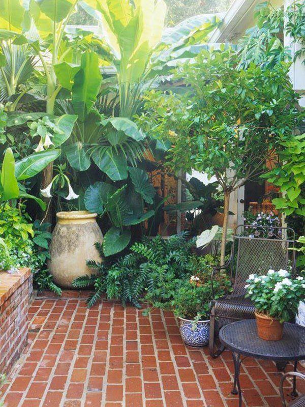 varanda com vegetação em vasos