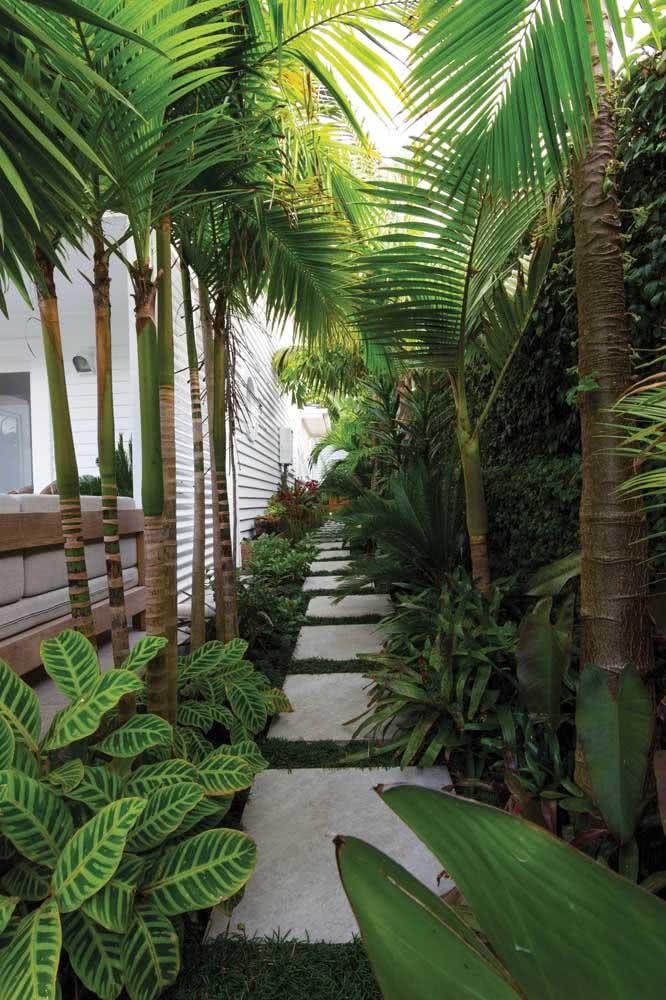 lateral de casa com plantas
