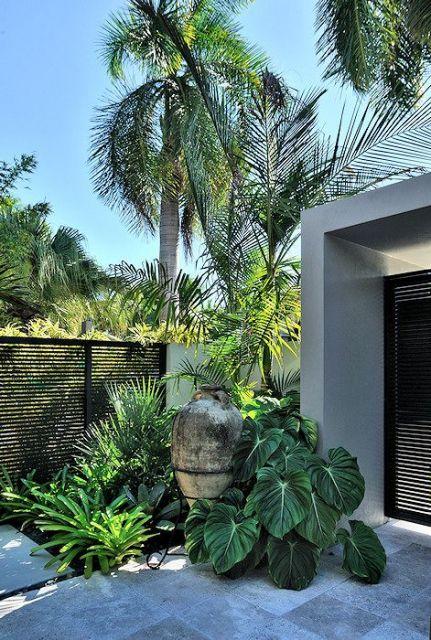entrada com jardim tropical