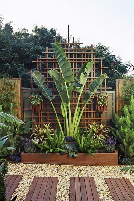 deck com vegetação