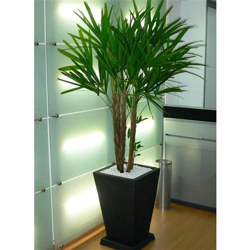 vaso simples para planta