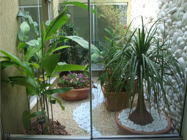jardim com palmeira ráfia