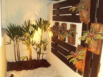 pequeno jardim de inverno com palmeira ráfia