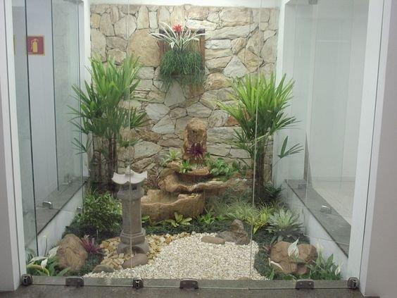 palmeira ráfia no jardim de inverno