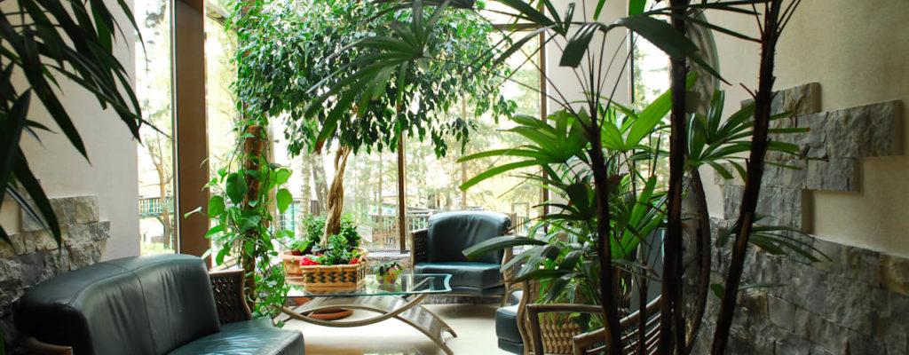 varanda com vegetação