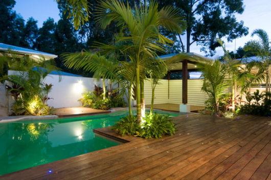 palmeira ráfia no jardim
