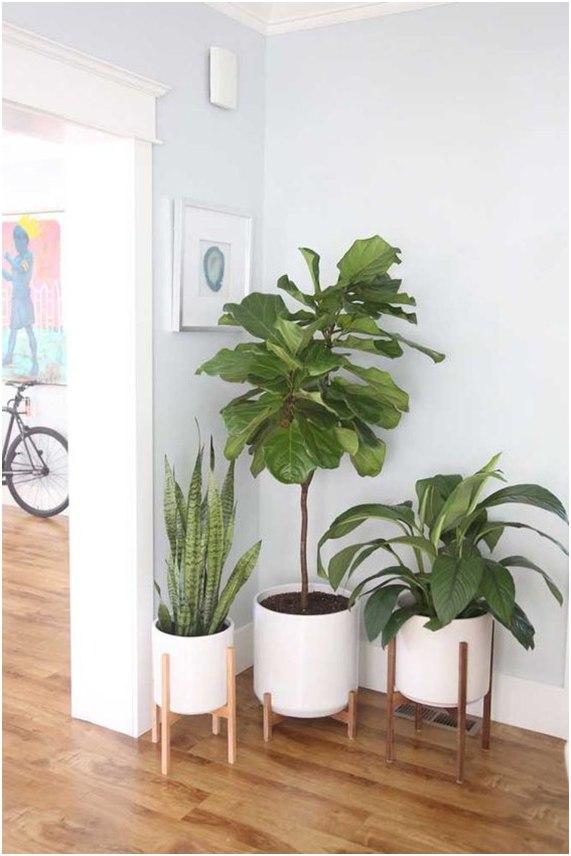 vaso modelo cachepot