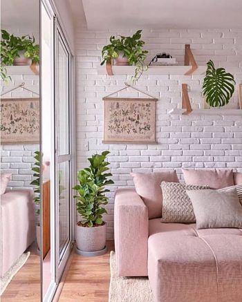 pontos com plantas