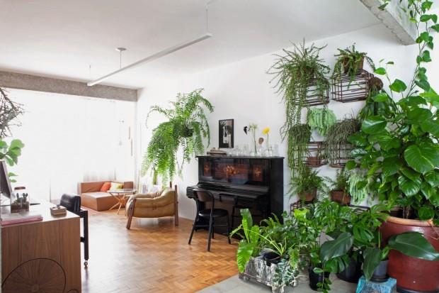 decoração com plantas verdes