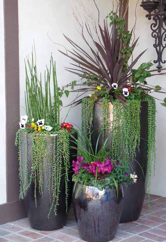 jardim interno com vasos