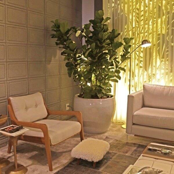 planta grande na sala