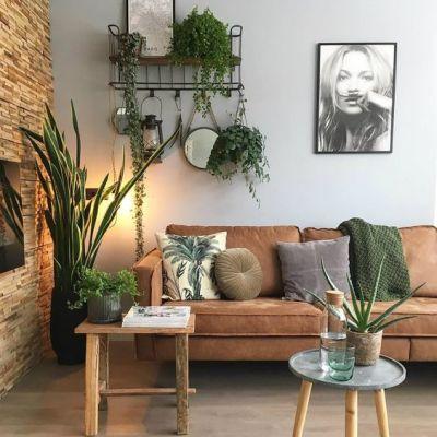 sala com decoração natural