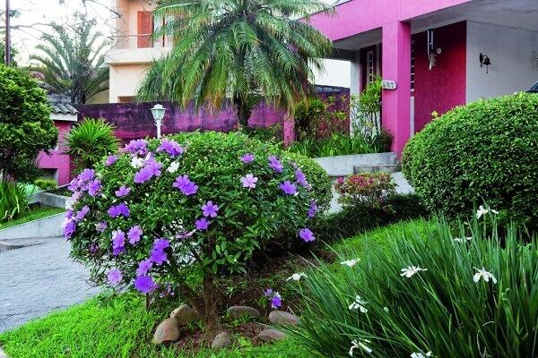 jardim de residencia